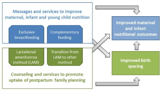 Graphic: Synergies between MIYCN and FP services and outcomes